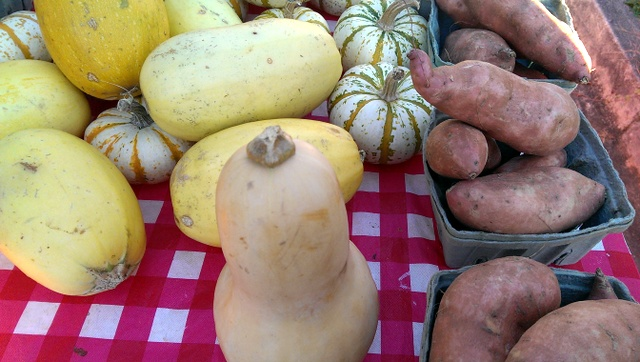winter squashes and sweet potatoes