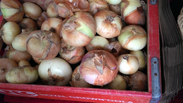 pretty onions at Grant Park Farmers Market